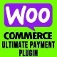 WooCommerce Ultimate Payment Plugin for Bluepay, NMI, and Braintree Payments