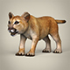 Low Poly Realistic Baby Lion