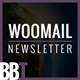WooMail - Woocommerce Email + Builder Access