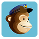 MailChimp Subscribe PHP Class Form