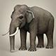 Low Poly Realistic Elephant