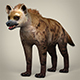 Low Poly Realistic Hyena