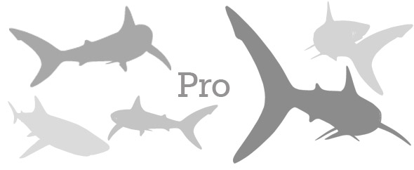 Sharks%20copy