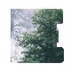 Exp - Minimal Portfolio, Grid-based Tumblr Theme
