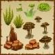 Variety Underwater Plants and Stones
