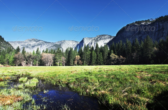 Spring in Yosemite - Stock Photo - Images