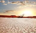Namib - PhotoDune Item for Sale