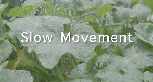 #Slow Movement
