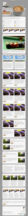 11_one-email-newsletter-with-template-builder-v10.__thumbnail