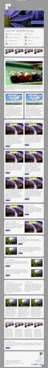 13_one-email-newsletter-with-template-builder-v12.__thumbnail