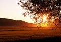 Sunset on grassland - PhotoDune Item for Sale