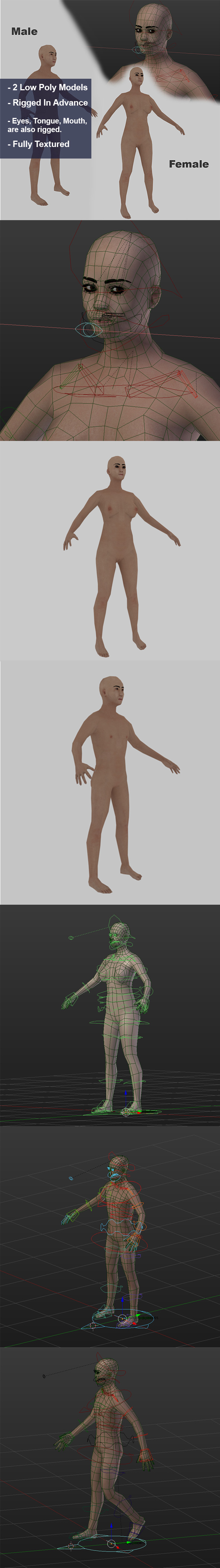 3DOcean Low Poly Human 14497978