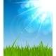 Natural Sunny Background Illustration