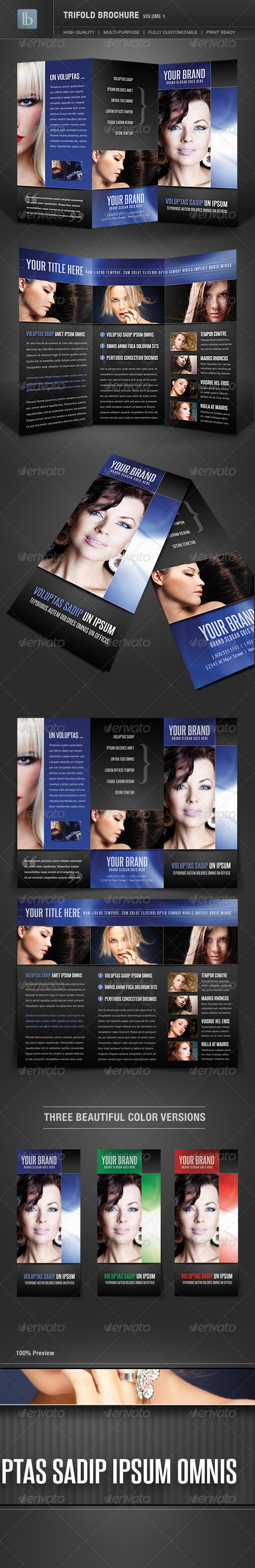 Trifold Brochure | Volume 1 - Corporate Brochures