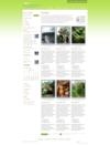 14_portfoliopagegreen.__thumbnail