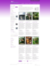 19_portfoliopagepurple.__thumbnail