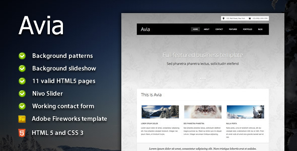 ThemeForest Avia Clean Business Template 1428815