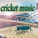 cricket_music