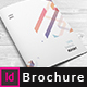 Annual Report Creative Indesign Brochure Template