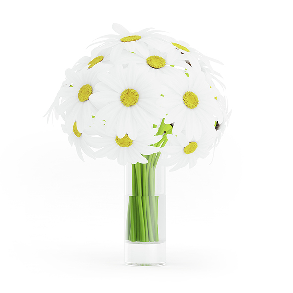 Daisies in Glass Vase - 3DOcean Item for Sale