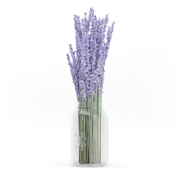 Purple Lupine in a Jar - 3DOcean Item for Sale