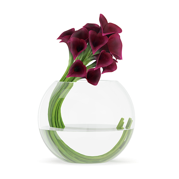 Calla Lilies in Spherical Vase - 3DOcean Item for Sale