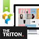 Triton - Multipage Portfolio WordPress Theme