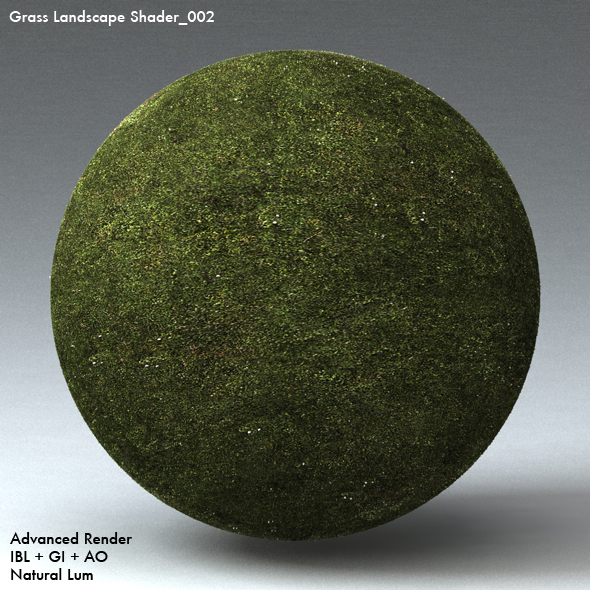 Grass Landscape Shader_002 - 3DOcean Item for Sale