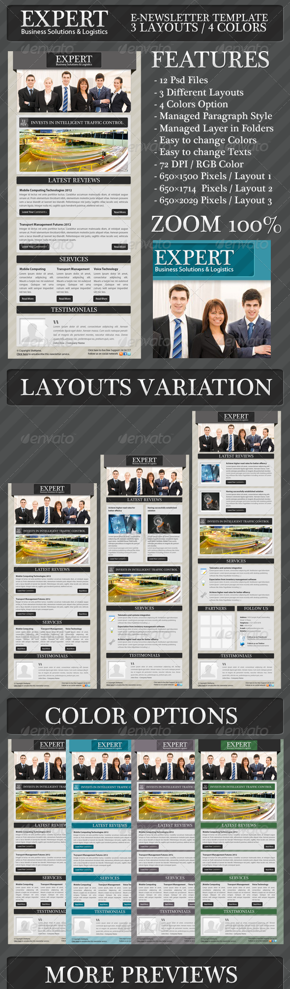 GraphicRiver Expert Business Solution E-newsletter Template 1461841
