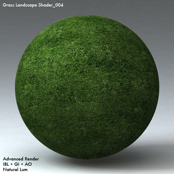 Grass Landscape Shader_004 - 3DOcean Item for Sale