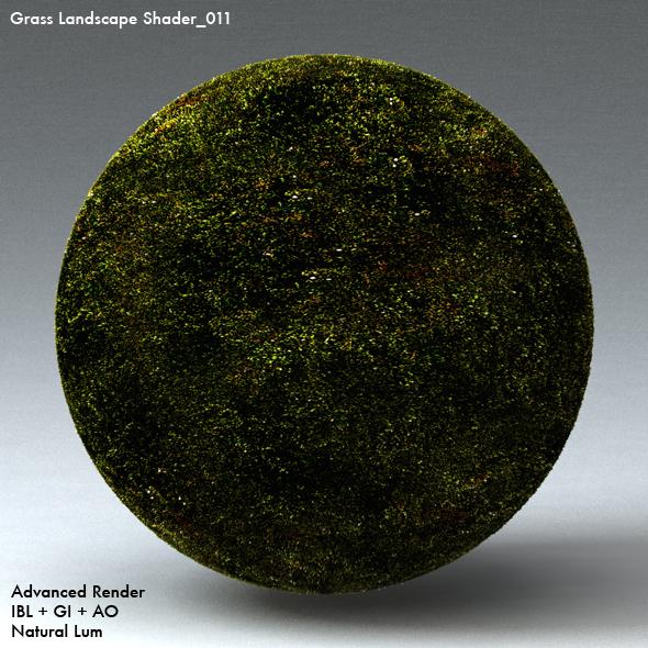 Grass Landscape Shader_011 - 3DOcean Item for Sale