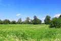 Beautiful field landscape - PhotoDune Item for Sale