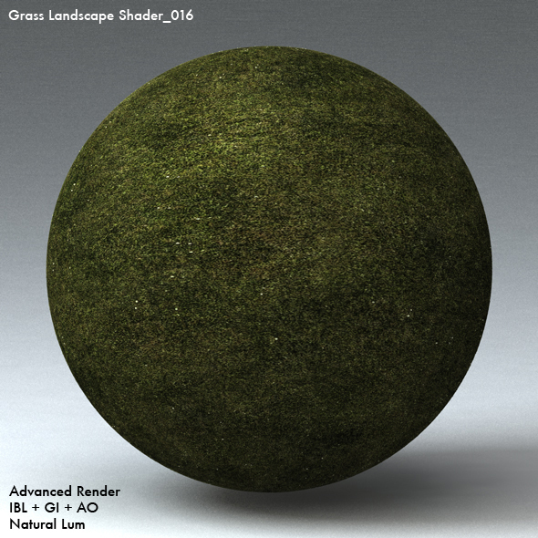 Grass Landscape Shader_016 - 3DOcean Item for Sale