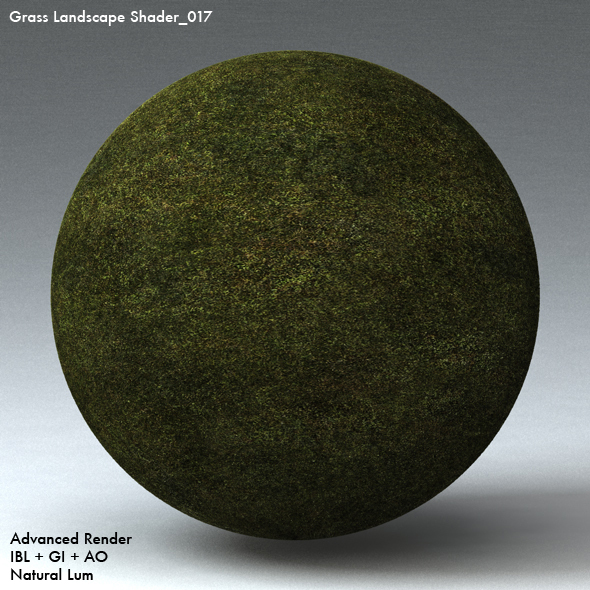 Grass Landscape Shader_017 - 3DOcean Item for Sale