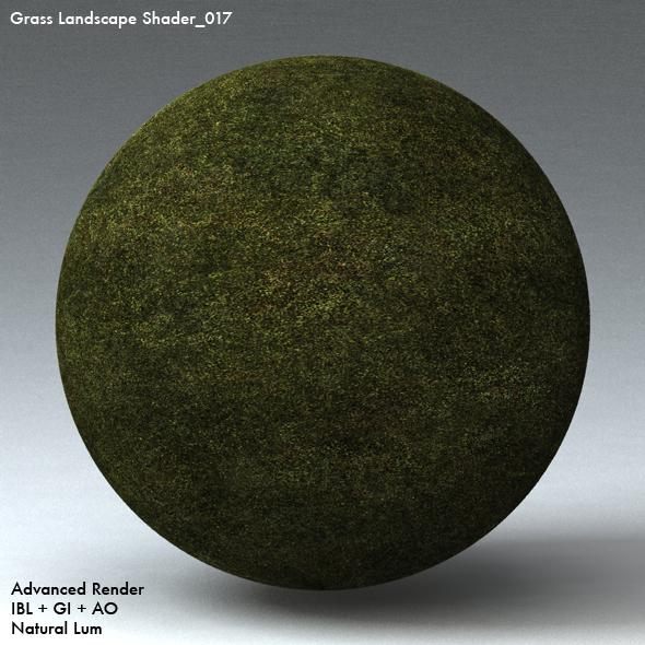 Grass Landscape Shader_017 - 3DOcean Item for Sale