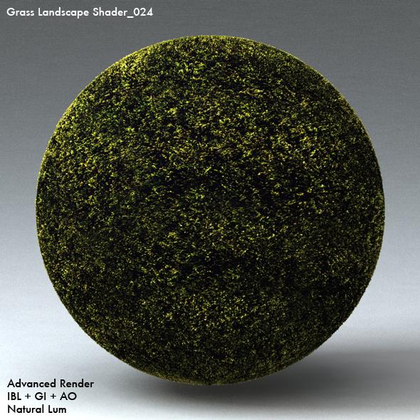 Grass Landscape Shader_024 - 3DOcean Item for Sale