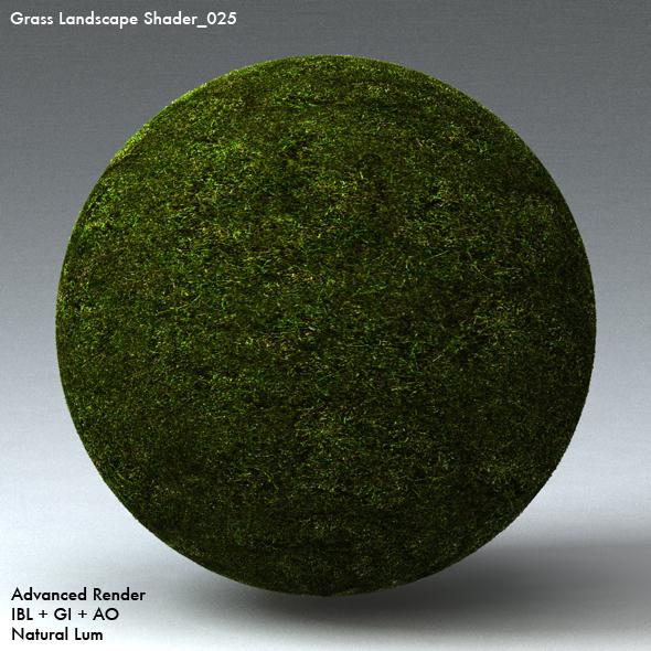 Grass Landscape Shader_025 - 3DOcean Item for Sale
