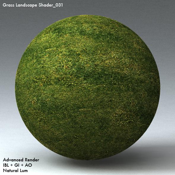 Grass Landscape Shader_031 - 3DOcean Item for Sale