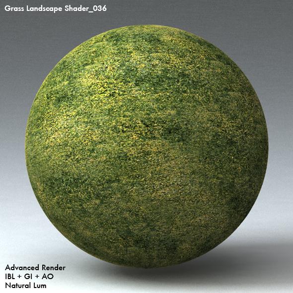 Grass Landscape Shader_036 - 3DOcean Item for Sale