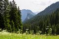 Mountain Kofel in the Bavarian Alps