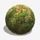 Autumn Weedy Grass Seamless Texture