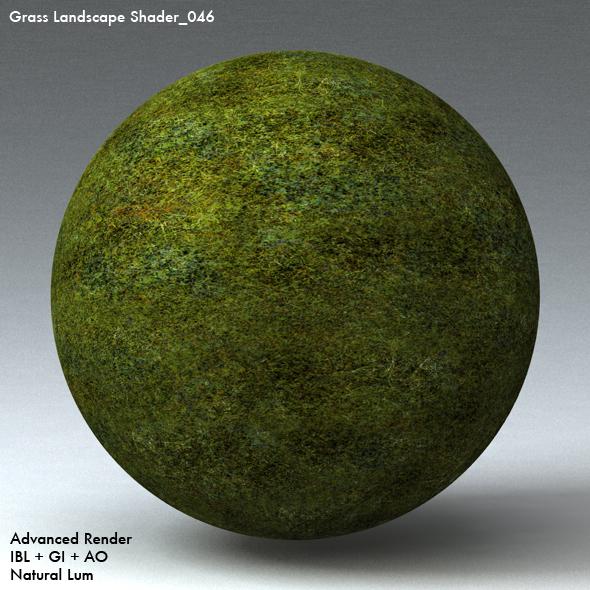 Grass Landscape Shader_046 - 3DOcean Item for Sale