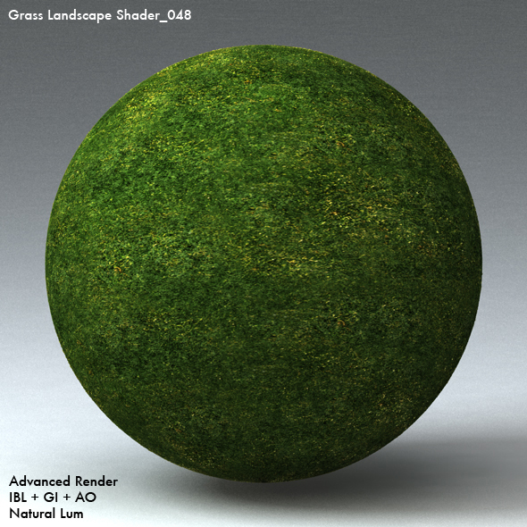 Grass Landscape Shader_048 - 3DOcean Item for Sale