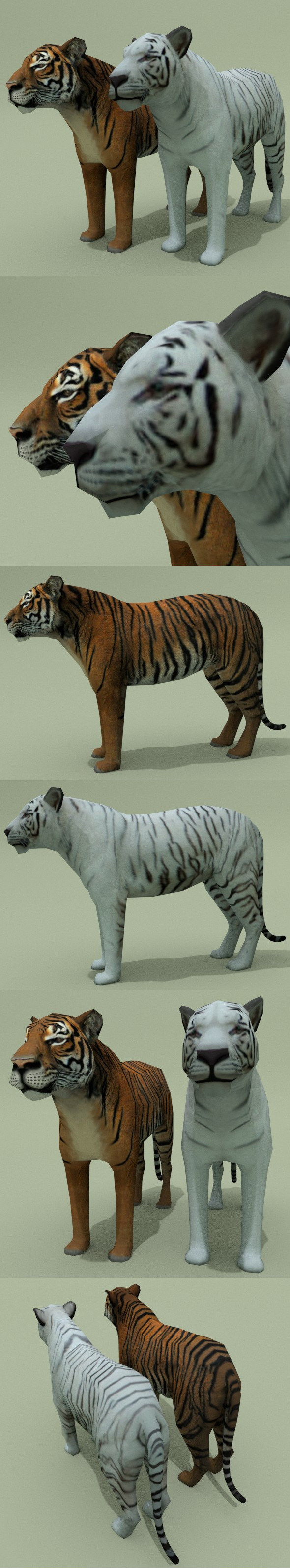 Low Poly Tiger (Red & White) - 3DOcean Item for Sale