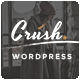 Crush - A Responsive WordPress Blog Theme