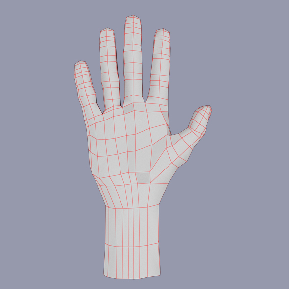 Hand Human Male - 3DOcean Item for Sale