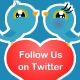 Lover Bird - Twitter Follow Me Button - ActiveDen Item for Sale
