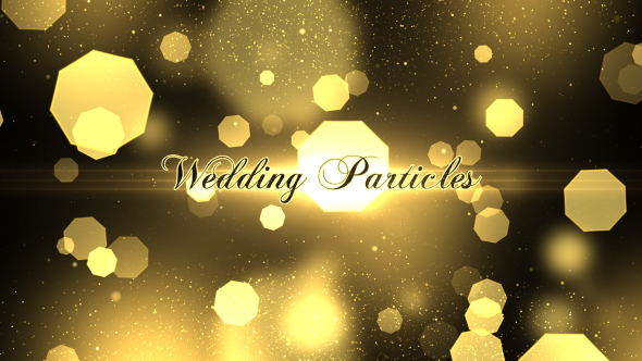 Wedding Particles Opener
