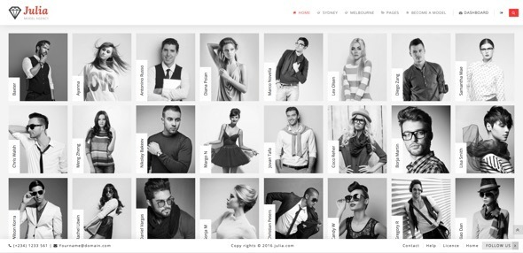 Download Julia - Talent Management WordPress Theme nulled download
