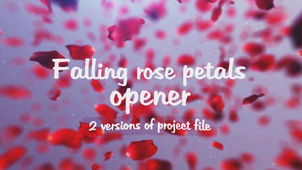 Falling rose petals opener (Special Events)